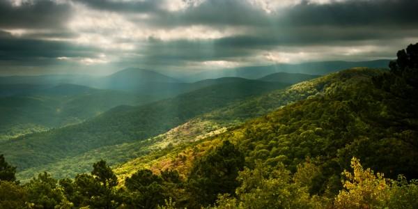 Emerald Vista