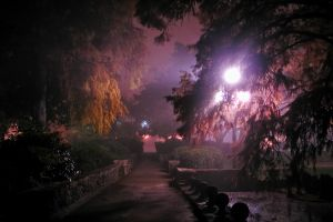 fog and night - 02.jpg
