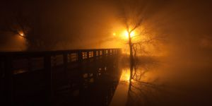 fog and night - 04.jpg