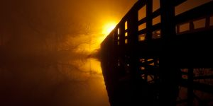 fog and night - 05.jpg