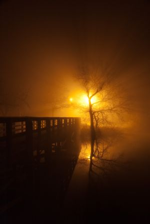 fog and night - 06.jpg