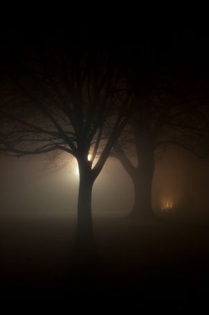fog and night - 07.jpg