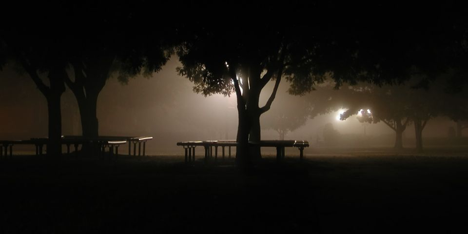 fog and night - 01.jpg