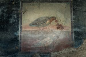 Bird and Grapes, Herculaneum